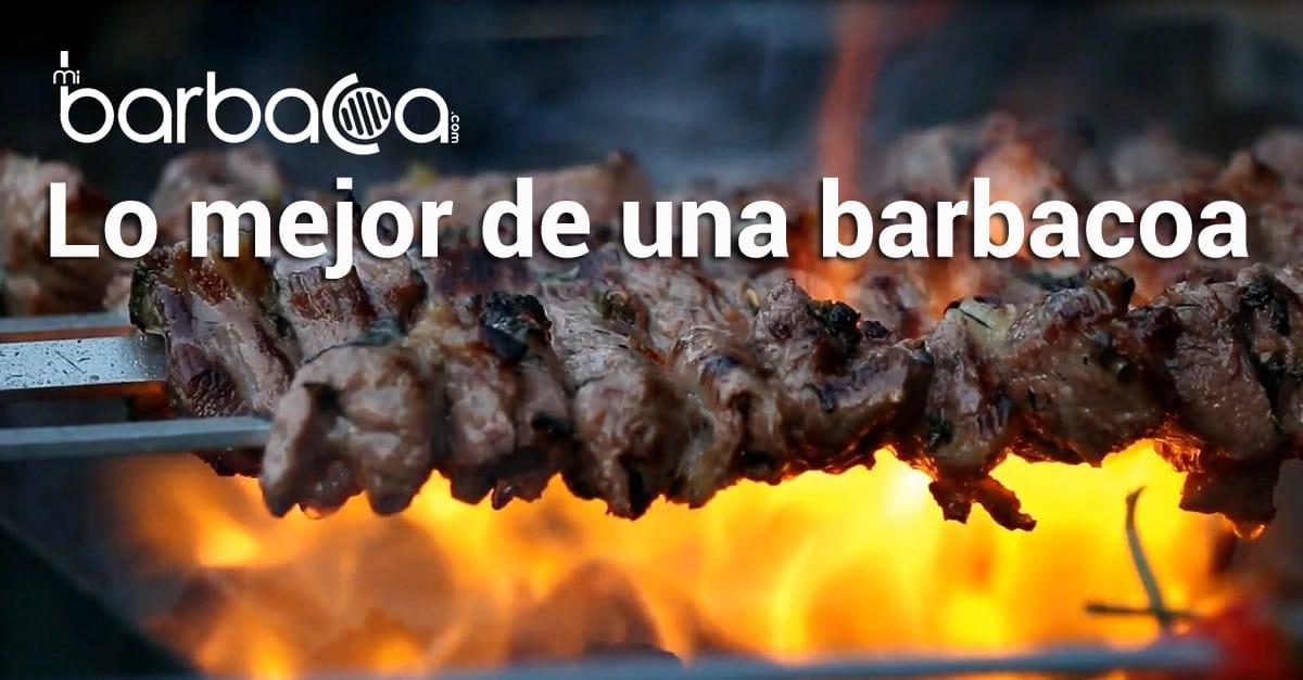 Preparar platos barbacoa deliciosos y originales con - Mejor lena para barbacoa ...